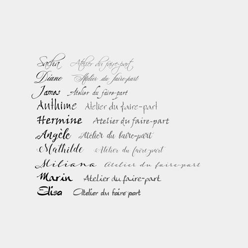 typographies calligraphiées